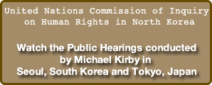 United Nations Commission of Inquiry on Human Rights in North Korea